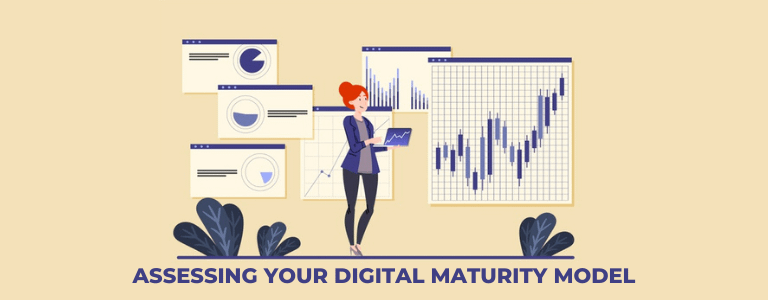 Assessing Your Digital Maturity Model